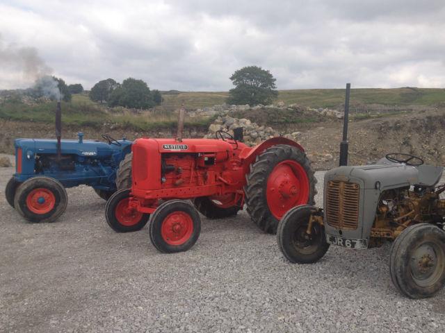Antique Tractor Horns : Museum gam farm rare breeds