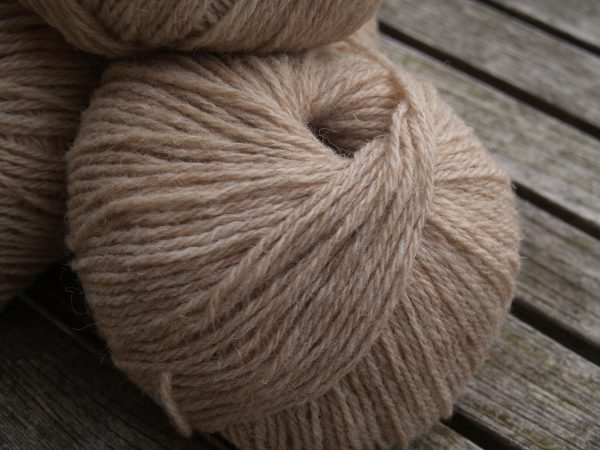 Softly Softly light DK in caramel fleck 50g